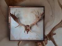 dear-antler-on-panel-size-ca90x90cm