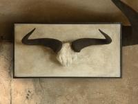 gnu-skull-on-a-wall-panel