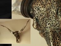 real longhorn skull engraved