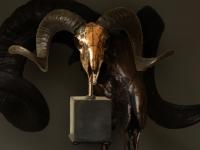 tibetan-ram-skull-in-antique-copper-on-base