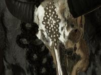 waterbuffel-schedel-zilver-wit-en-crystal-apllicatie