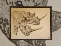 wall-panel-rhinos