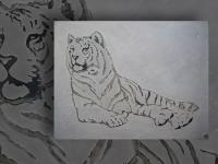wall-panel-seberian-tiger-pan021-091-100x130cm