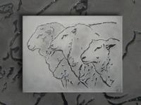 wall-panel-sheep-pan030-09-size-63x85cm