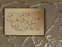wall-panel-sheep-pan048-09